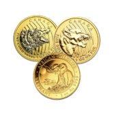 1oz Gold Coin - Mixed Coins4
